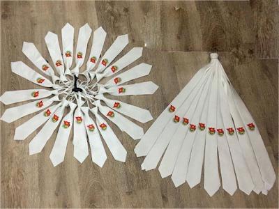Cà vạt Đoàn màu trắng